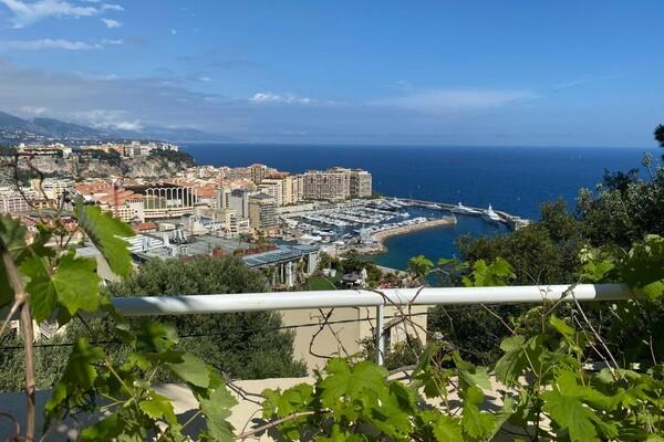 Next to Monaco